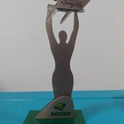 Premio destaque em hotelaria de Cafelândia - PR